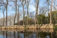 Het hoeden van schapen in Vlaanderen stock afbeeldingen