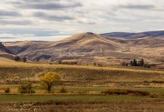 Het hoge Landschap van de Woestijn stock foto