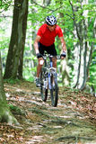 Het hogere drijven in het bos met bergfiets Stock Afbeeldingen