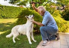 Het hogere mens spelen met Witte Zwitserse Herdershond in de tuin royalty-vrije stock afbeelding