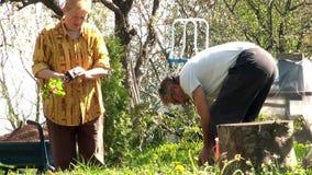 Het hogere paar doen die in hun binnenplaats tuinieren stock videobeelden