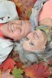 Het hogere paar ontspant in de herfstpark Stock Foto's