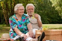 Het hogere paar picknicking in het park royalty-vrije stock afbeeldingen