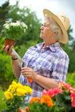 Het hogere vrouw tuinieren Royalty-vrije Stock Afbeelding