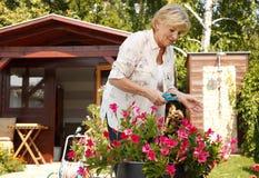 Het hogere vrouw tuinieren Stock Fotografie
