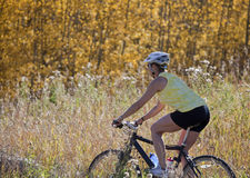 Het hogere vrouwenberg biking Royalty-vrije Stock Fotografie