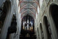 Het Hol Bosch van Januari van Heilige van Cathdral Stock Afbeelding