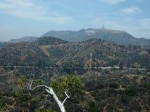 Het Hollywood-Teken dat van Griffith Park Observatory wordt gezien Stock Afbeeldingen