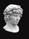 Het hoofd van Antinous onder het mom van Bacchus op een zwarte achtergrond Stock Afbeelding