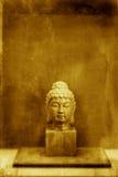 Het Hoofd van Boedha stock fotografie