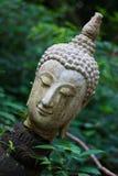 Het hoofd van Boedha in Wat Umong Chiangmai 3 Stock Foto's
