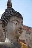 Het hoofd van Boedha, Wat Wattanaram stock afbeeldingen