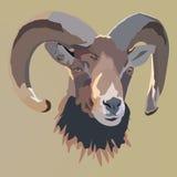 Het hoofd van bruin RAM Vector illustratie Royalty-vrije Stock Fotografie