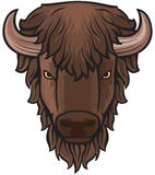 Het hoofd van buffels Stock Foto