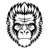Het hoofd van de aap Stock Foto's