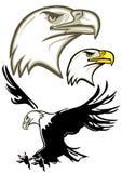 Het Hoofd van de adelaar, Adelaar stock illustratie
