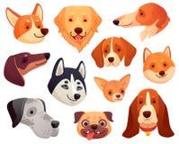 Het Hoofd van de beeldverhaalhond De grappige snuit van het puppyhuisdier, het glimlachen het hondgezicht en de honden isoleerden royalty-vrije illustratie
