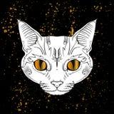 het hoofd van de beeldverhaalkat met gouden ogen jn zwarte achtergrond Stock Foto
