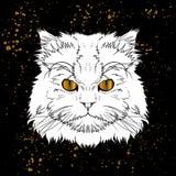 het hoofd van de beeldverhaalkat met gouden ogen jn zwarte achtergrond Royalty-vrije Stock Foto