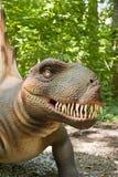 Het hoofd van de dinosaurus Stock Foto