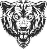 Het hoofd van de hevige wolf royalty-vrije illustratie