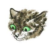 Het hoofd van de kat Stock Afbeelding