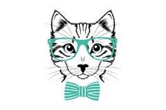 Het hoofd van de kat met groene glazen en leuke band royalty-vrije illustratie