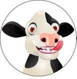 Het hoofd van de koe Stock Afbeelding