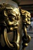 Het hoofd van de leeuw? Stock Afbeelding