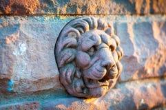 Het Hoofd van de leeuw Stock Fotografie