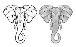 Het hoofd van de olifant Stock Foto