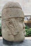 Het hoofd van de Olmecsteen Stock Afbeelding