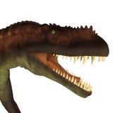 Het Hoofd van de Prestosuchusdinosaurus Royalty-vrije Stock Afbeeldingen