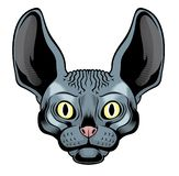 Het hoofd van de sfinxkat stock illustratie