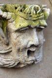 Het hoofd van de steen Royalty-vrije Stock Fotografie