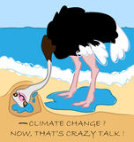 Het Hoofd van de struisvogel in Zand Stock Afbeeldingen