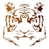 Het hoofd van de tijger. Stock Fotografie