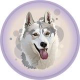 Het hoofd van de wolf in een cirkel stock illustratie