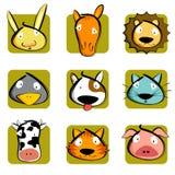 Het Hoofd van dieren Stock Foto