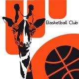 Het hoofd van een giraf met een basketbal op een wit-oranje achtergrond Stock Foto's