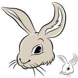 Het Hoofd van het konijn Royalty-vrije Stock Foto's