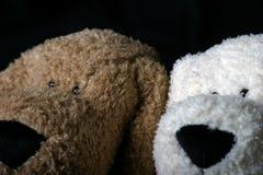 Puppyhoofd Stock Foto's