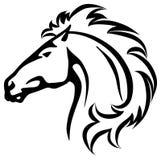 Het hoofd van het wild paard Royalty-vrije Stock Fotografie