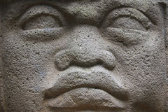 Het hoofd van Olmec Stock Foto's