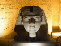 Het hoofd van Ramses stock afbeeldingen