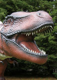 Het Hoofd van Rex van tyrannosaurussen Stock Foto