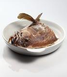 Het Hoofd van vissen Stock Afbeelding