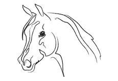Het hoofdvector van het paard Stock Foto's