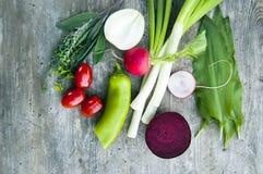 Het hoogste schot, sluit omhoog van de kleurrijke jonge lente vers oogstend, organische, knapperige, sappige verse groenten met e royalty-vrije stock foto