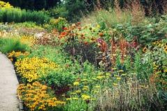 Het hoogtepunt van de de zomertuin van bloemen Stock Fotografie